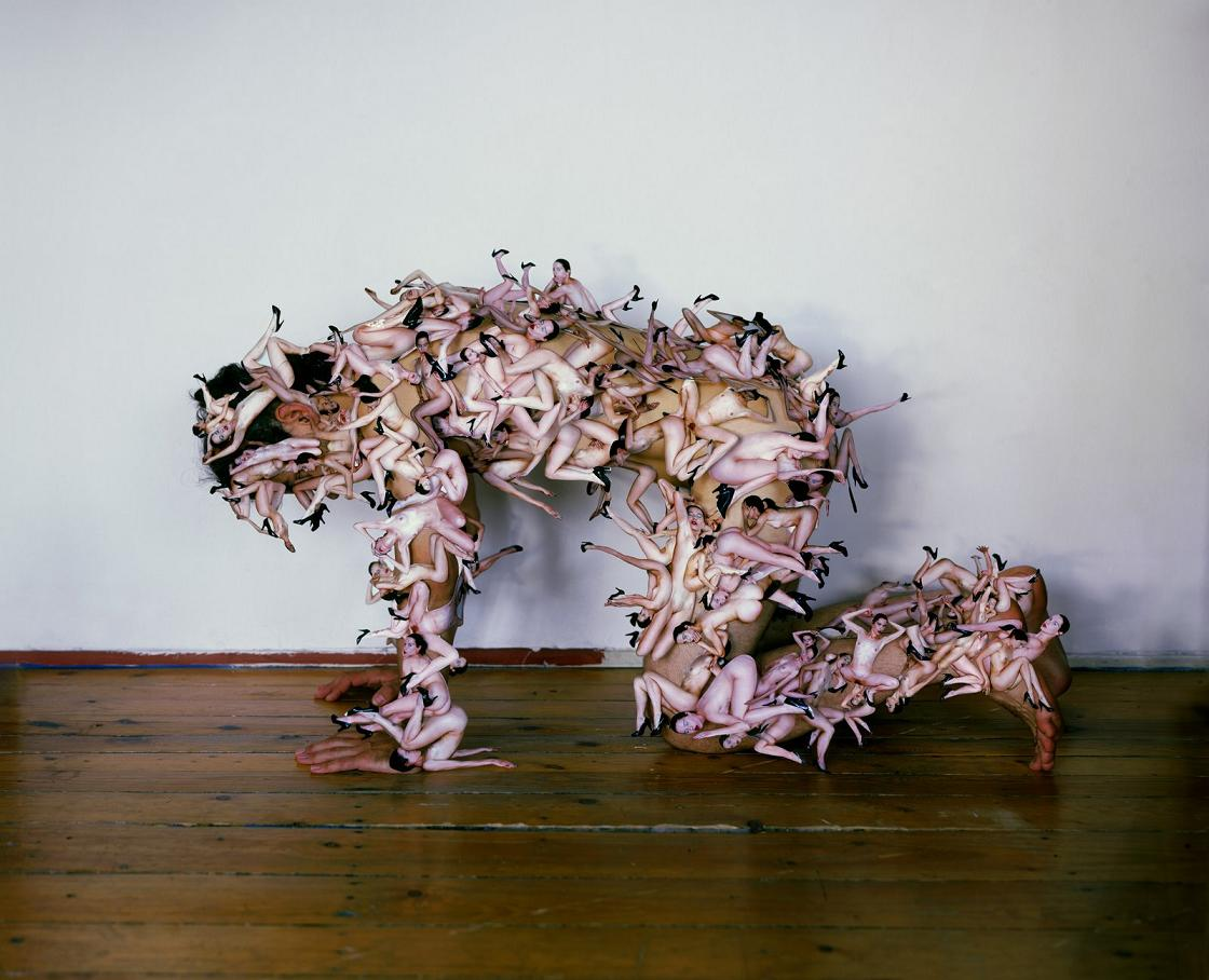 Untitled (dog), c-print, 180 x 225 cm, 2007